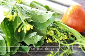 เมนูผักกวางตุ้งต้มจับฉ่ายทำขายเป็นอาชีพเสริมเพิ่มรายได้