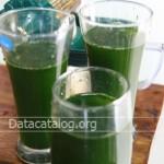 สูตรน้ำผักผลไม้เพื่อสุขภาพทำน้ำผักผลไม้ขายเป็นอาชีพเสริมทำเงิน