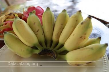 วิธีทำกล้วยเชื่อมขนมหวานไทยๆเมนูง่ายๆ